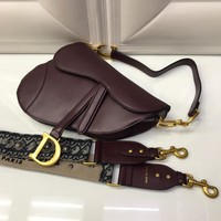 Beauty Ticks Christian Dior Saddle #3699