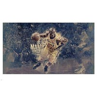 the BLACK MAMBA shall RISE kobe BRYANT poster 24X36 Basketball Star cool
