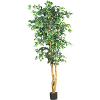 Walmart: 6' Ficus Silk Tree