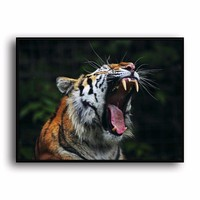 SR--0492 Bengal Tiger Natural Scenery Animal. HD Canvas Print Home decoration Living Room bedroom Wall pictures Art painting