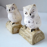 Vintage Owl Salt and Pepper Shakers White and Grey on Tan Logs