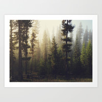 Sunrise Forest Art Print by Kevin Russ