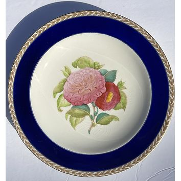1940 Hand Painted Pink Camelias Botanical English Transferware Plate Blue Border