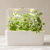 Click & Grow Plant Refill Cartridge - Urban Outfitters