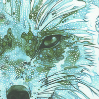 Ice Blue Fox 4 x 6 print of detailed by DeepColouredWater on Etsy
