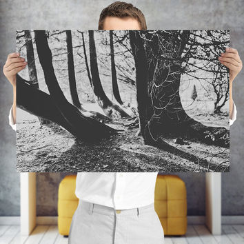 Monochrome Forest Art Print - Black and White Nature Photography, Digital Download | Cottage Decor | Woodland Wall Art
