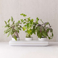Duo Herb Planter   Urban Outfitters