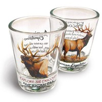 American Expedition Set of 2 Shot Glasses