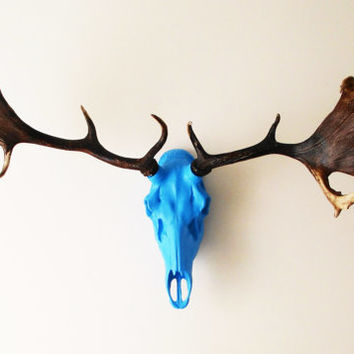 Deer Skull, Deer Head, Faux Taxidermy, Skulls, Woodland, Animal Skull, Stag Head, Faux Taxidermy, Skull, Stag Skull, Hodi Home Decor