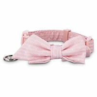 Bond & Co. Pink Polka Dot Puppy Collar | Petco