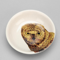 Urban Outfitters - Owl Catch-All Dish