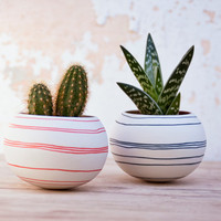 ceramic cactus planter (orange stripes). porcelain planter for, cactus, succulent or air plant. Crafted by Wapa Studio.