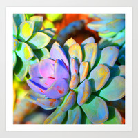 Succulent Color - Botanical Art by Sharon Cummings Art Print by Sharon Cummings