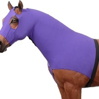 Saddles Tack Horse Supplies - ChickSaddlery.com Mane Stay Spandex Hood with 3/4 Zipper Closure