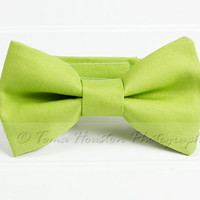 Boy's, Girl's Bow Tie, Newborn, Baby, Child- Chartreuse, Toma's Tutus and Things