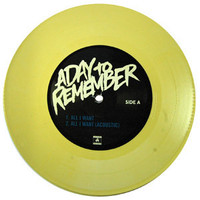 A Day To Remember: All I Want 7