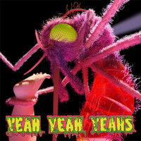 Yeah Yeah Yeahs Mosquito Lp Vinyl One Size For Men 24721695001