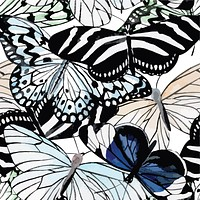 Flock of Butterflies Insects Multicolored Wallpaper Reusable Removable Accent Wall Interior Art (wal029)
