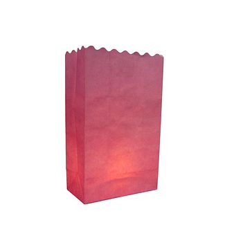 BLOWOUT Pink Solid Color Paper Luminaries / Luminary Lantern Bags Path Lighting (10 PACK)