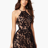 Floral Lace Overlay Halter High Waisted Mini Dress