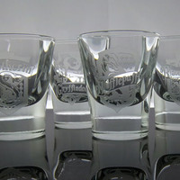 Harry Potter set of 4 etched shot glasses.