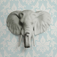 The Large Savannah Gray Faux Taxidermy Resin Elephant Head Wall Mount | Gray Elephant w/ Colored Tusks