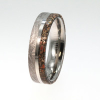 Meteorite and Dinosaur Bone Ring on a Titanium Ring - Engraving Available