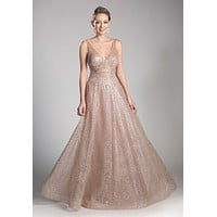 Champagne/Gold Long A-line Prom Dress V-Neck and Back