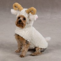 Zack & Zoey Polyester Lil Sheep Halloween Dog Costume, Medium, 16-Inch