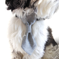 Dog Neck Tie - Business Suit Grey - Dog Collar Accessory
