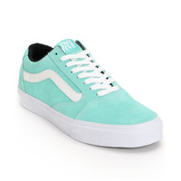Vans TNT 5 Seafoam Green & White Suede Skate Shoes