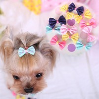 Pet Hair Accessories Dog Hair Clips Pins Grooming Tools Supplies Free Shipping