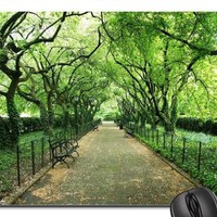 A Walk Through Central Park, New York City Mouse Pad, Mousepad (Forests Mouse Pad)