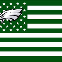 NFL Philadelphia Eagles Logo American Flag
