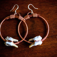 Hammered solid copper hoop earrings with genuine deer tooth detail / taxidermy death macabre real bone jewelry / rustic natural jewelry