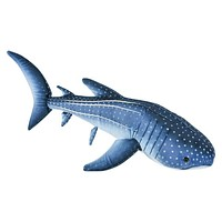 24 Inch Whale Shark Plush Stuffed Animal Floppy Ocean Species Collection