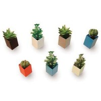 A+R Store - Off the Wall Mini Plant Pot Product Detail