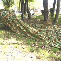 2*3M  Camouflage net Camo For Hunting Camping Military Photography NL116
