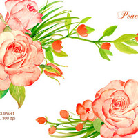 hand painted watercolour peach roses, salmon pink roses digital clipart instant download scrapbook wedding cards greeting cards