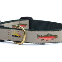 Fly Fishing Dog Collar and Lead