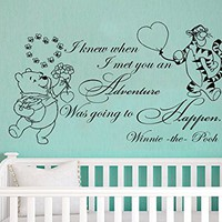 Wall Decals Quotes Vinyl Sticker Decal Quote Winnie the Pooh Tigger I Knew When I Met You An Adventure Nursery Baby Room Kids Bedroom C589