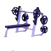 Quantum Olympic Flat Bench Press with Plate Storage