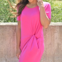 A Stroll In The Park Dress - Fuchsia