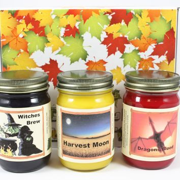 """Fall Scented Halloween Candle Collection, """"Fright Night"""", Witches Brew, Harvest Moon, and Dragon Blood Scents, Three 12 Ounce Candles"""