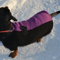 Two color butterfly  dog Sweater Clothes Hand Knitting  dachshund medium dog