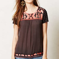 Embroidered Nerine Top