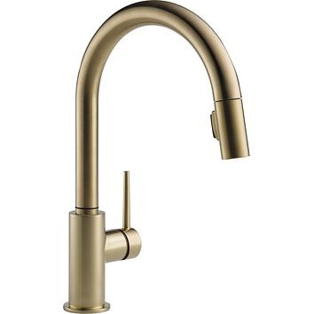 Delta Faucet Trinsic Single-Handle Kitchen Sink Faucet with Pull Down Sprayer and Magnetic Docking Spray Head, Champagne Bronze 9159-CZ-DST Standard