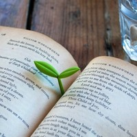 Sprout Bookmarks