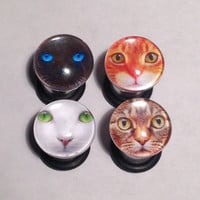 Cat Picture Plugs & Earrings 14g-00g