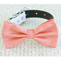 Coral dog Bow tie attached to collar, Coral wedding, Coral bow, Dog lovers, Coral , Wedding dog collar